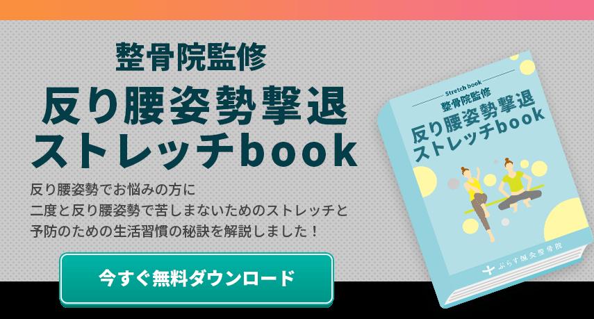 反り腰解消e-book