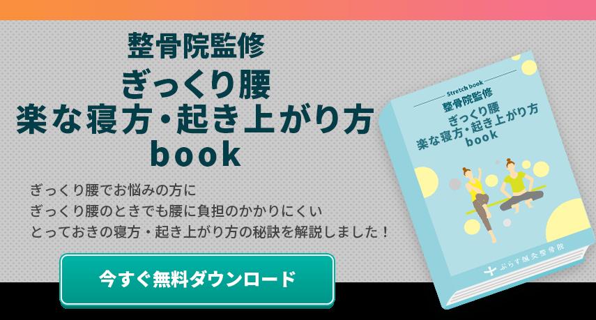 ぎっくり腰e-book